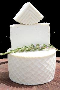 queso majorero tierno (transparente)